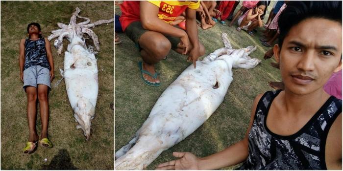 Филиппинский рыбак поймал 2,5-метрового кальмара и подарил его жителям деревни