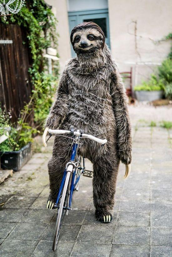 Реалистичный костюм-ленивца