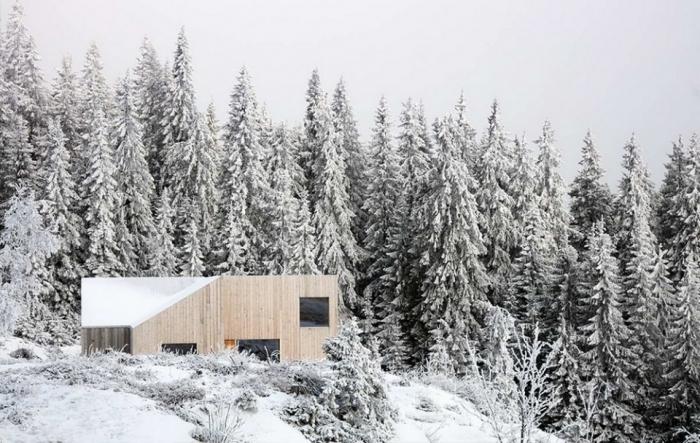 Деревянный домик в живописном сосновом лесу возле Осло