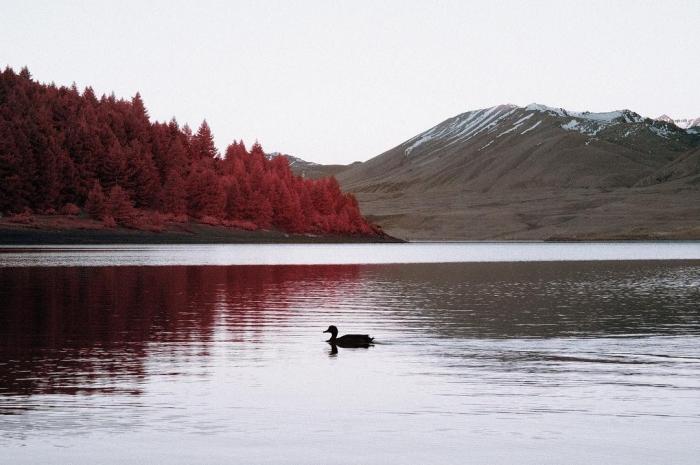Пейзажи Новой Зеландии на инфракрасных снимках