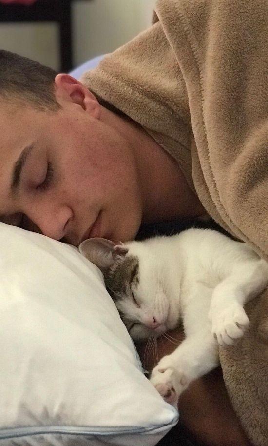 Удивительное преображение бездомного кота