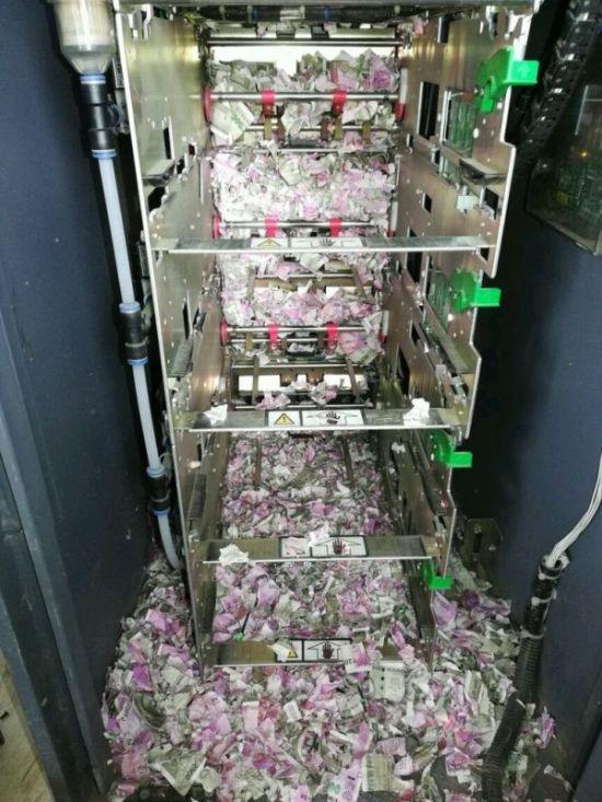 В Индии крысы уничтожили более миллиона рупий