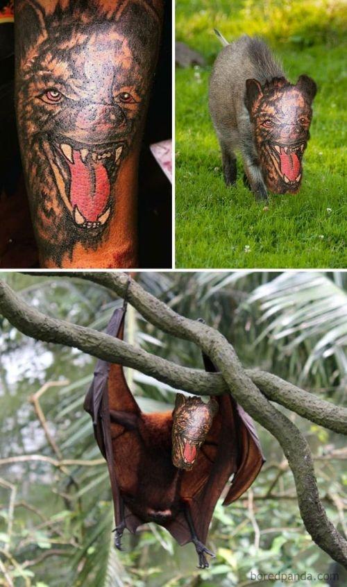 Если бы татуировки соответствовали реальности