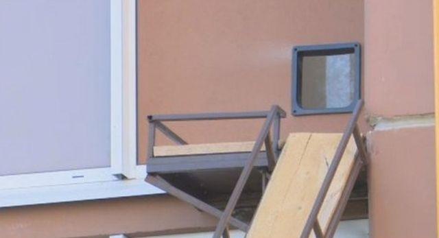 Кот получил свой персональный вход в одну из квартир в многоэтажке