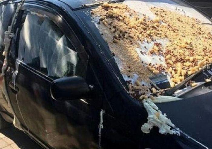 Жестокое наказание за неправильную парковку в Краснодаре