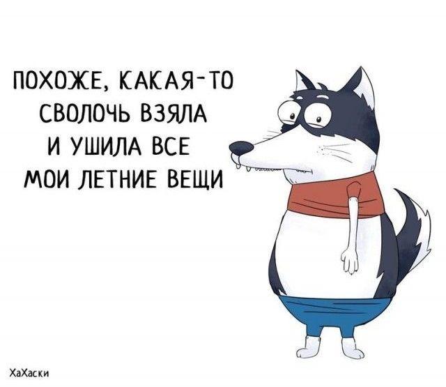 Забавные комиксы из жизни Хаски Карла