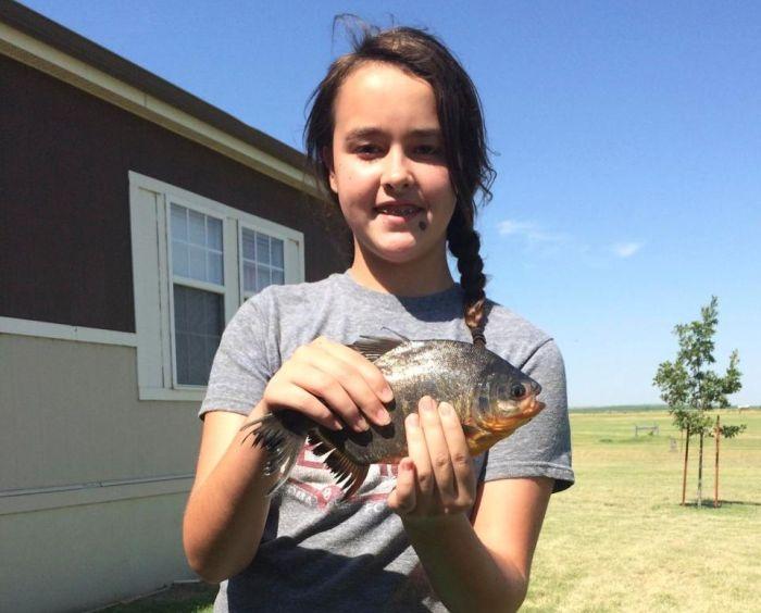 Девочка поймала рыбу с человеческими зубами