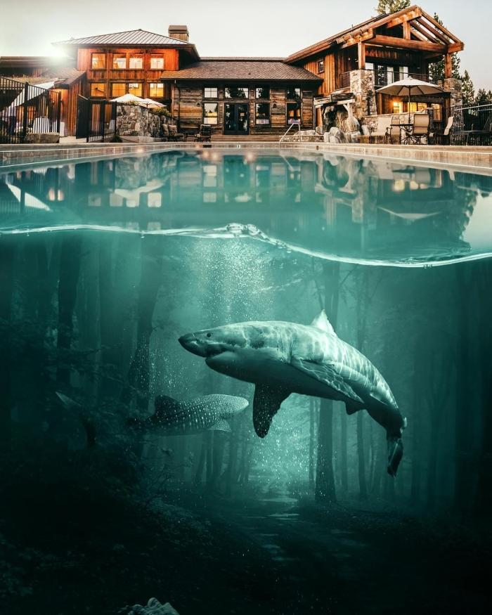 Удивительные фотоманипуляции Хусейна Шахина