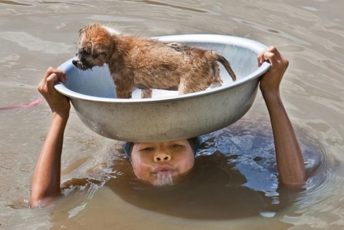 Фотографии, которые говорят больше чем слова