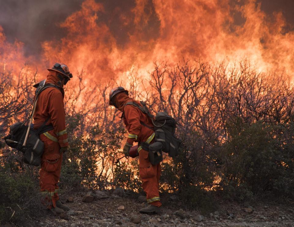 Картинки с последствиями пожаров