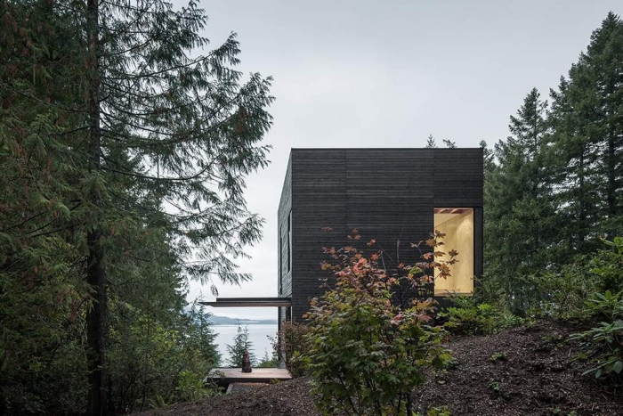 Загородный дом в лесу над фьордом в США