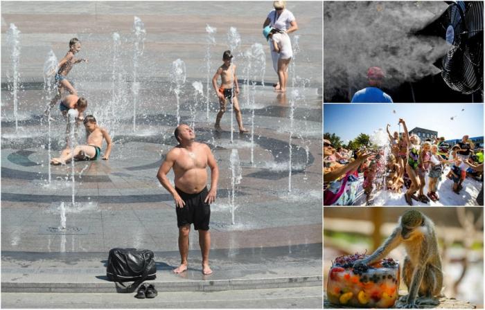 Лед, вентиляторы и вода европейцы спасаются от жары