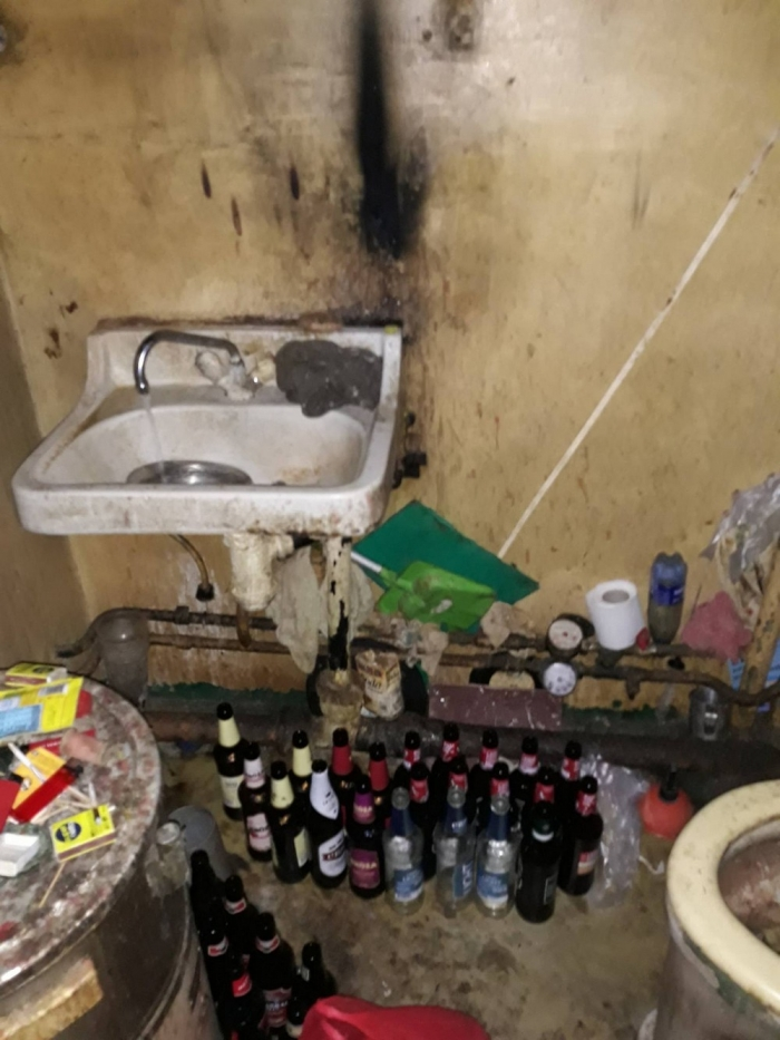 Кошкин дом: рижская пенсионерка содержала 24 кота в квартире