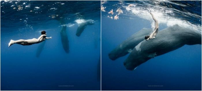 Обнаженная Мариса Папен плавает с китами
