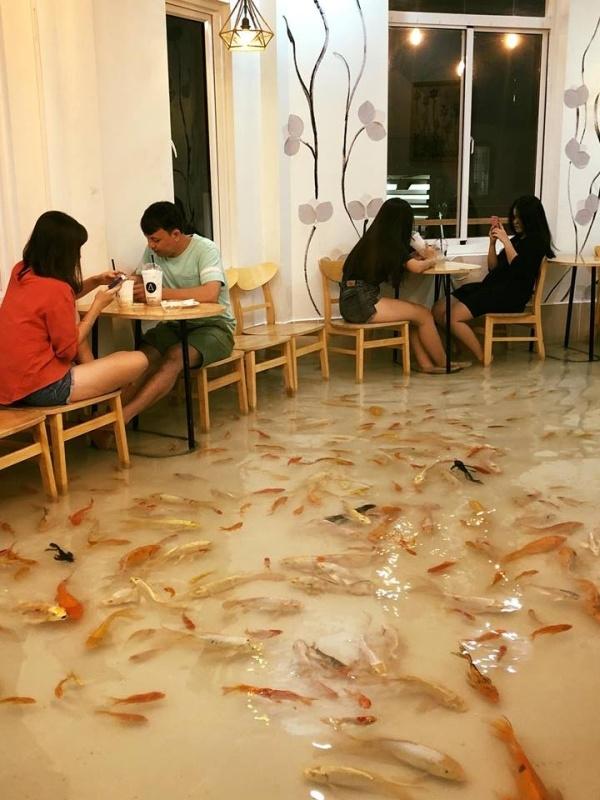 Необычное кафе во Вьетнаме