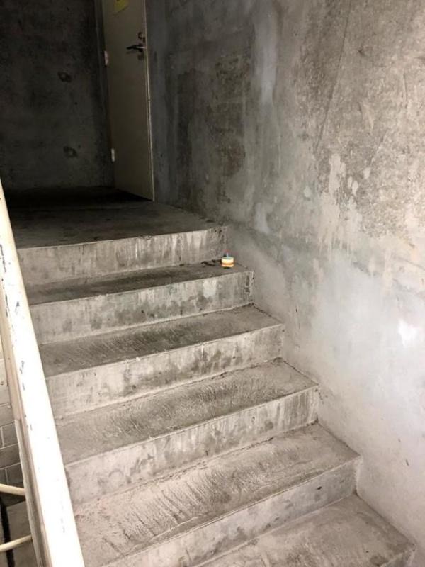 История одного мертвого таракан на лестнице