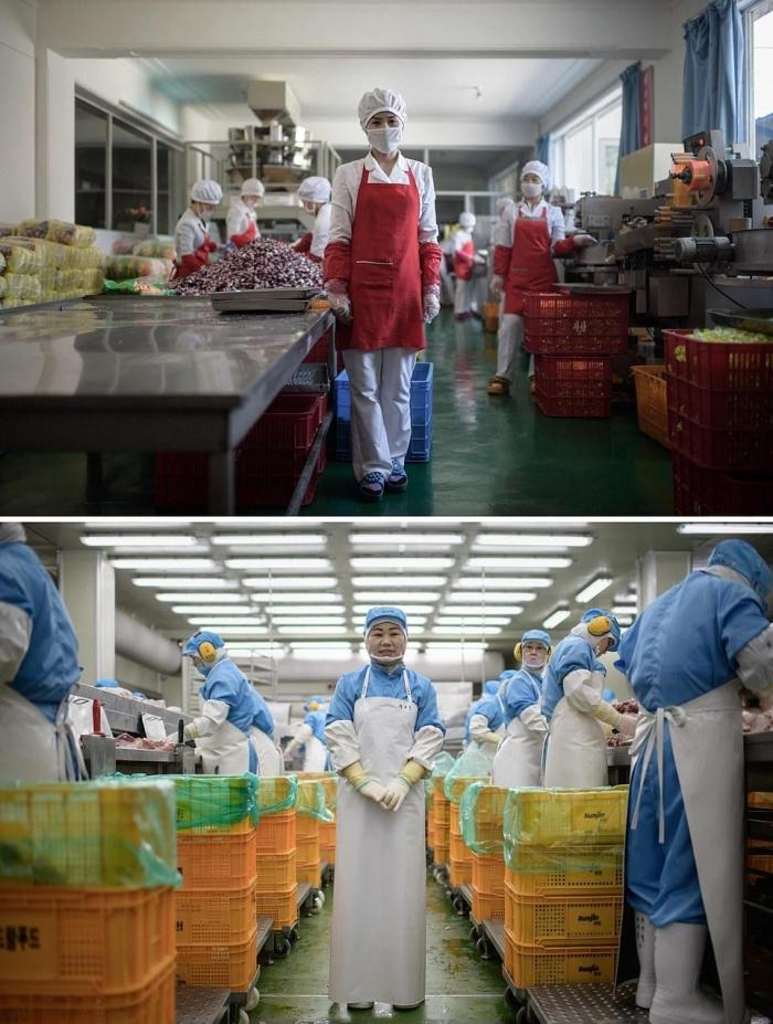 Север и Юг: контраст между жизнью по обе стороны корейской границы