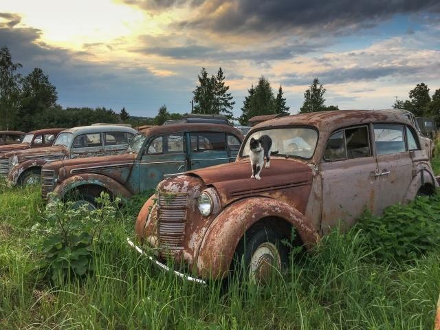 330 автомобилей-легенд доживают свой век под открытым небом