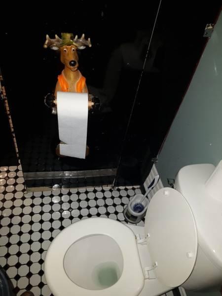 Туалет - самое важное место в любом доме