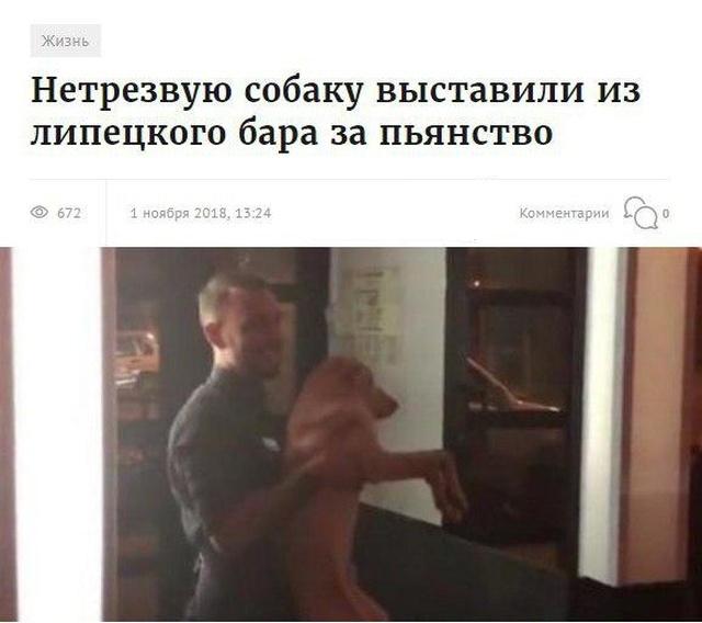 Заголовки новостей, которые заставят вас улыбнуться