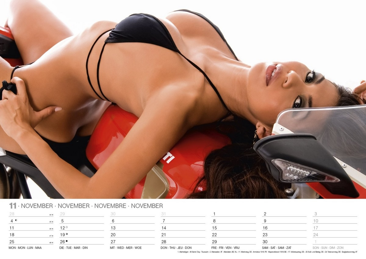 Construction chicks wall calendar