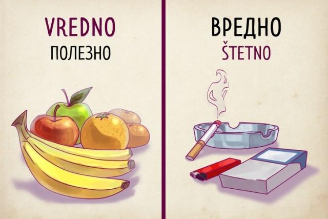 Почему сербский язык способен удивить русскоязычного туриста