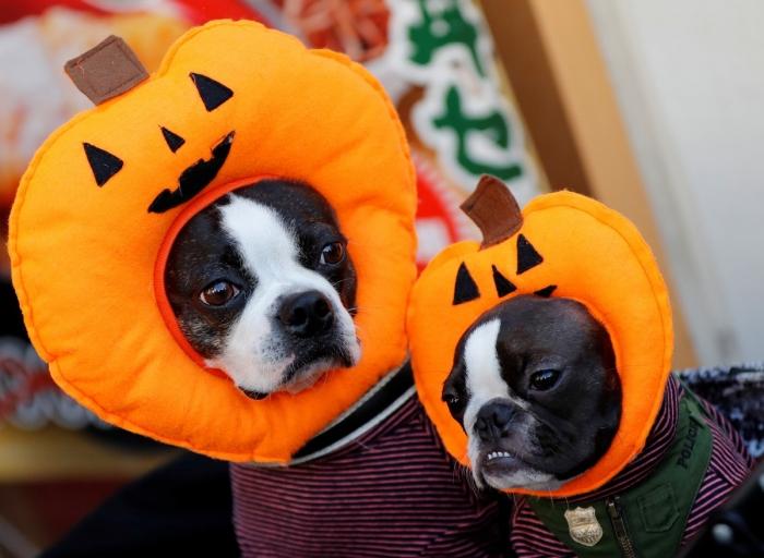 Парады на Хэллоуин по всему миру