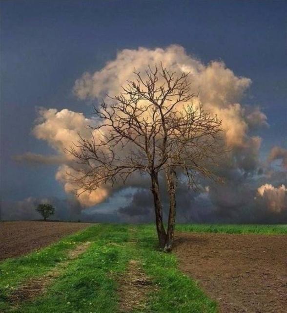 Яркие фотографии вместо тысячи слов