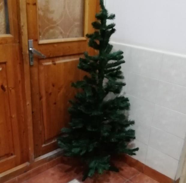 Новогоднее настроение, которое создают соседи