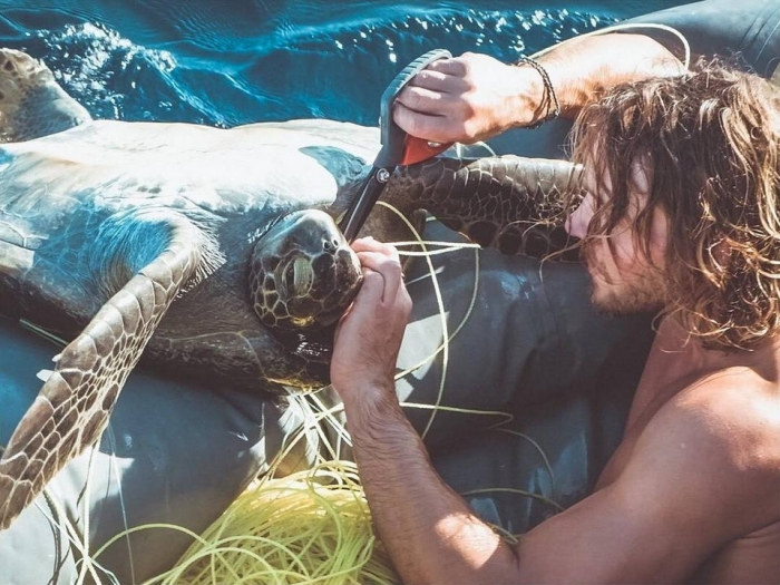 «Они живы, мы должны спасти их» братья-путешественники спасли четырех морских черепах