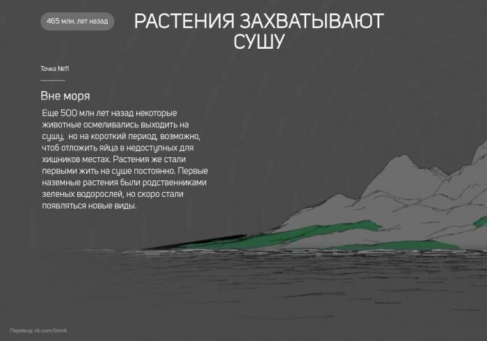 История Земли в 25 поворотных точках
