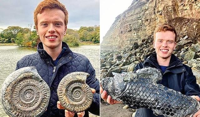 Британец нашел на пляже древнее существо, возраст которого может составлять 185 миллионов лет