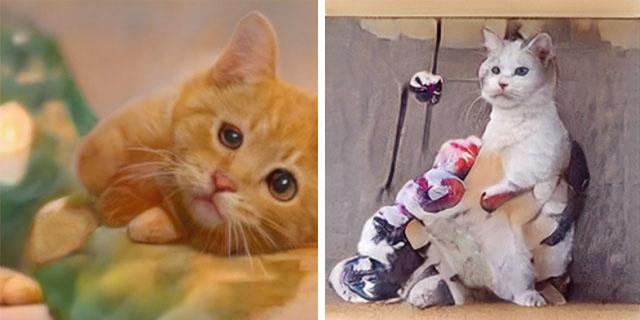 Нейросеть, генерирующая фото котов, не особо справляется с задачей