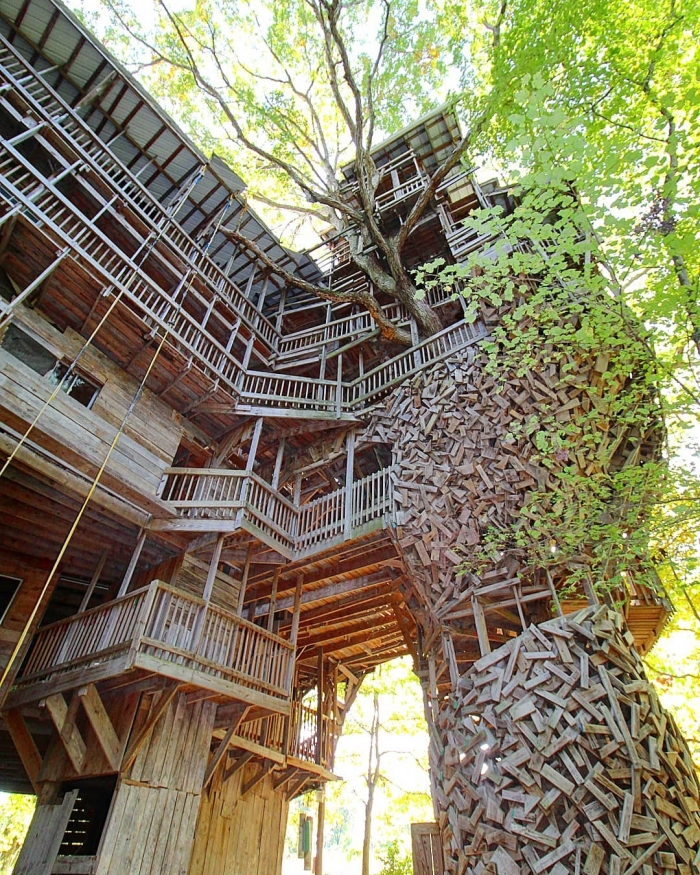 11-этажный дом на дереве