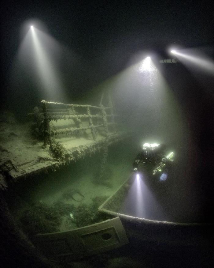Захватывающие подводные снимки Алекса Доусона
