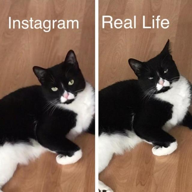 У каждого идеального снимка в Instagram есть своя обратная сторона
