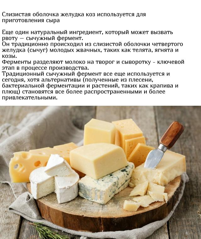 Неожиданные и необычные ингредиенты, которые содержатся в еде