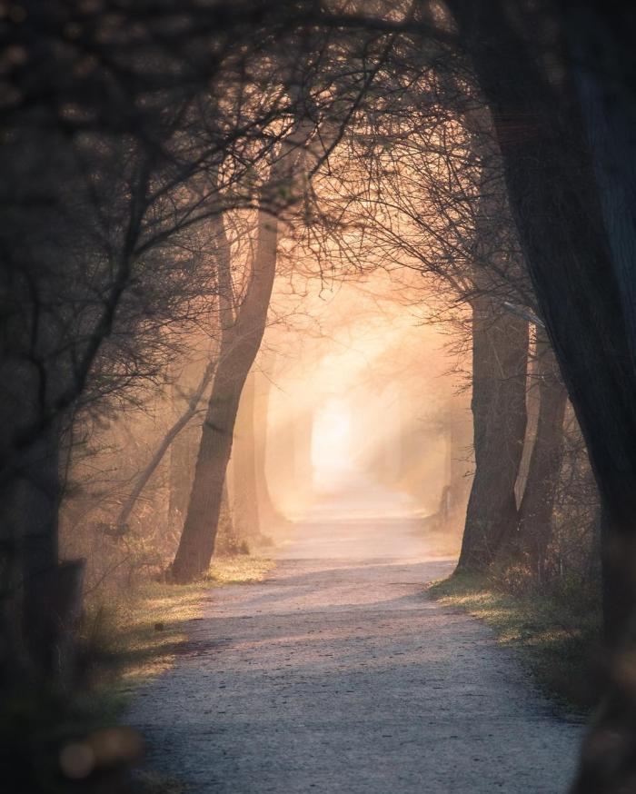 Красивая природа на снимках Логана Брауна