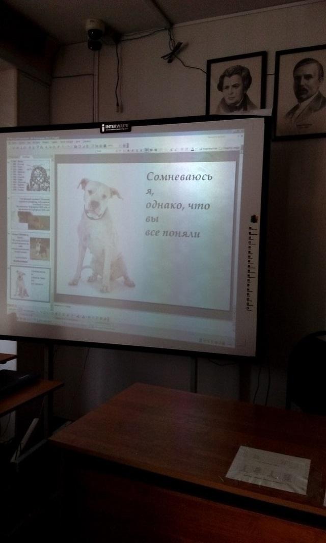 Подборка крутых и смешных слайдов со студенческих презентаций