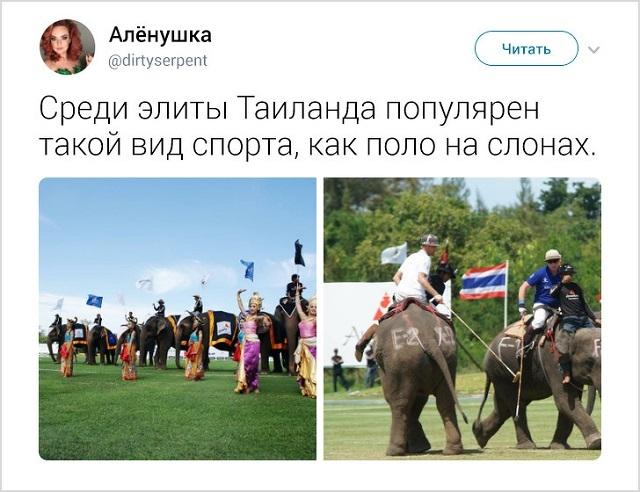 35 занятных фактов о Таиланде от москвички, которая прожила там 5 лет