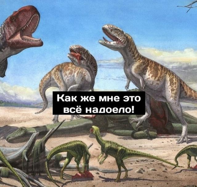 Минутка размышлений о приспособляемости видов от динозавров