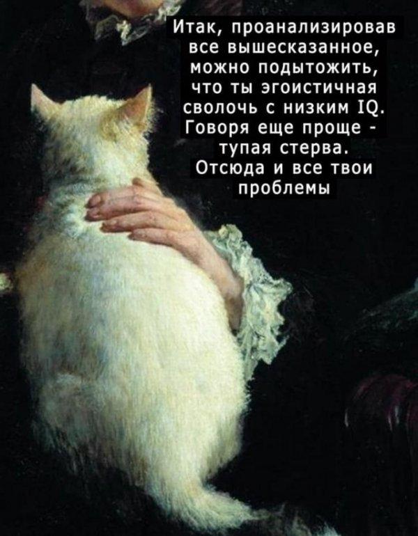 Показательный психологический портрет от котейки или по-простому кот фигни не скажет