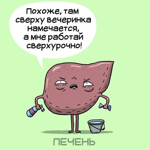 Серия комиксов о работе внутренних органов человека
