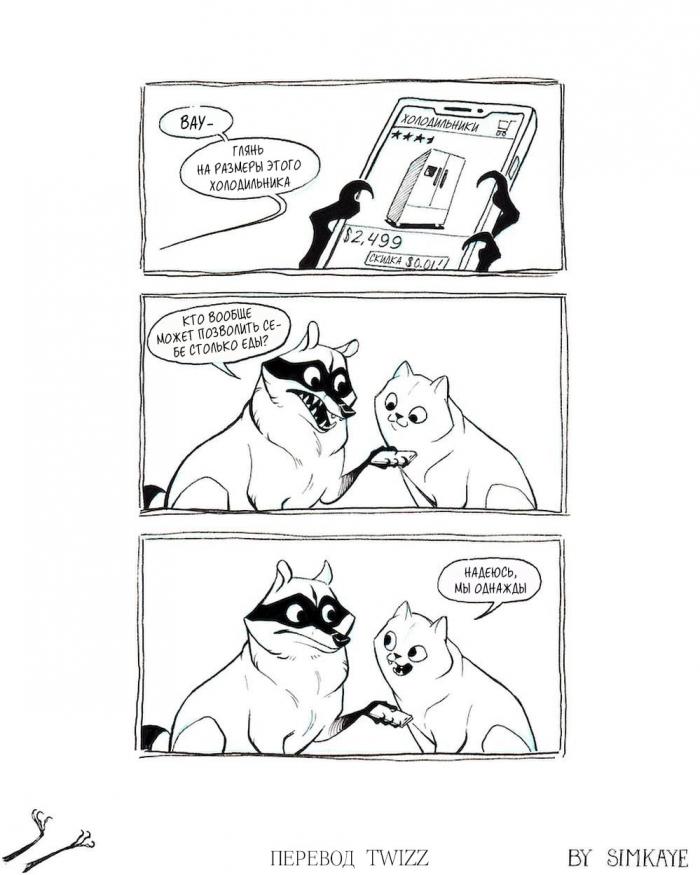 Крутые комиксы про енота, которые поймут все взрослые