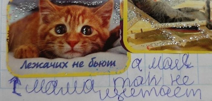 Повзрослевшие пользовательницы поделились забавными цитатами из своих детских дневников