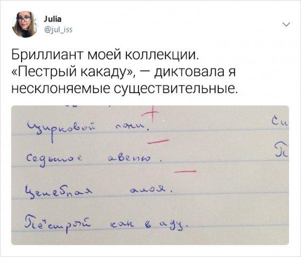 Забавные и правдивые твиты о школьной жизни от учительницы