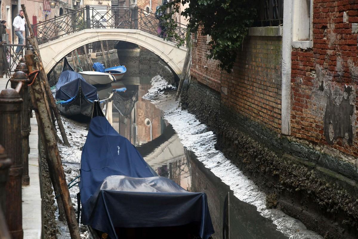 площадь, венеция есть вода фото на сегодня этом