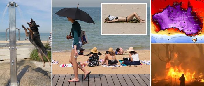 Убийственная жара в Австралии