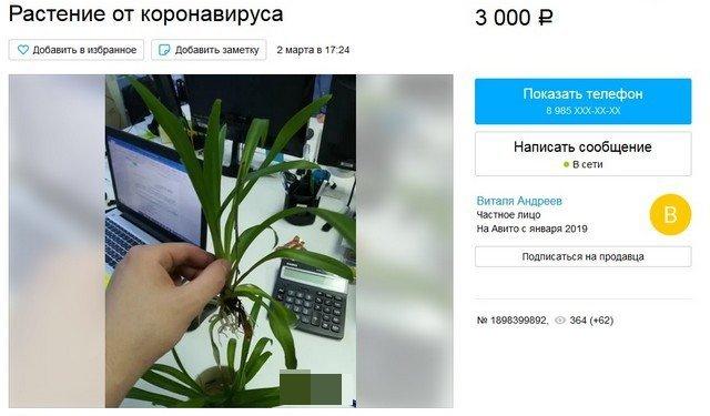 Пока весь мир создает вакцину от коронавируса, в России уже всё придумали