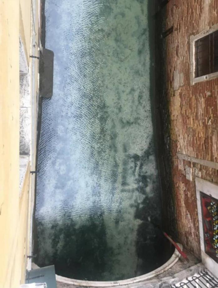 Венецианские каналы очистились из-за блокировки, связанной с коронавирусом